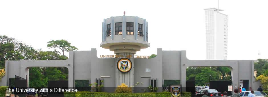 virtual semester in the University of Ibadan
