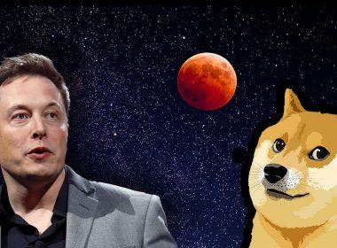 Elon Musk's support for Dogecoin