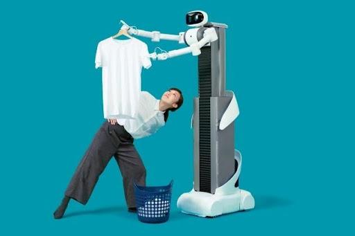 domestic robots